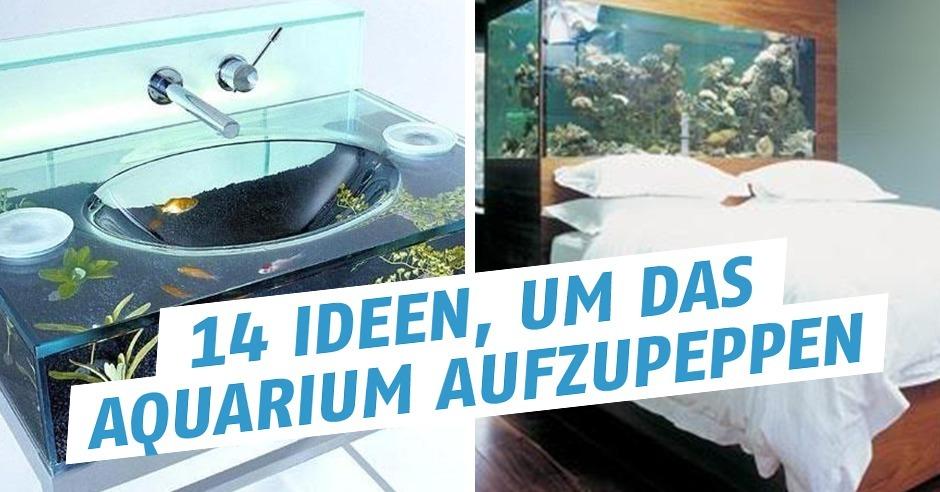 14 ideen um das aquarium aufzupeppen - Aquarium ideen ...