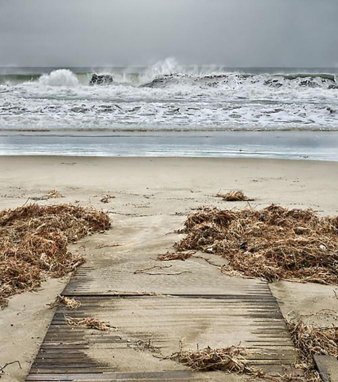 Schönheitspflege am Strand: Wirkungen von Algen, Sand, Muscheln und Meerwasser für Haut und Haare