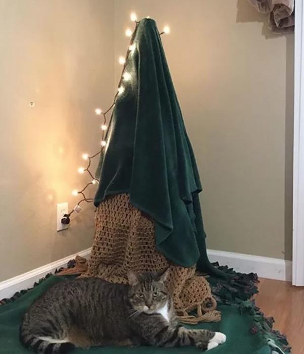17 geniale Ideen, mit denen du deinen Weihnachtsbaum vor deinen Haustieren sicherst