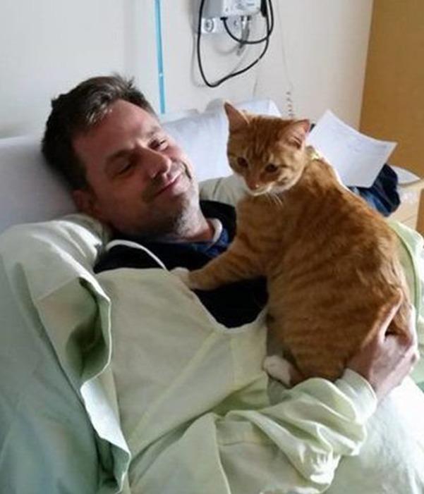 Wenn die treuesten Freunde Kraft und Trost spenden: Hier dürfen Tiere ihre Besitzer im Krankenhaus besuchen