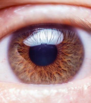 Schwarzes, Die Augen Verbundenes Küken Wird Gefickt