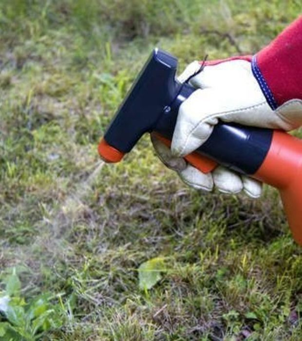 Er sprüht Spülmitte auf seinen Rasen. Der Grund ist unfassbar