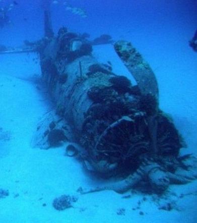 Unterwasserfunde: Die geheimen Schätze des Meeres