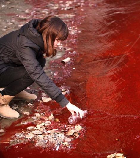 Grauenhafte Bilder: Das sind die Folgen von Umweltverschmutzung und Erderwärmung