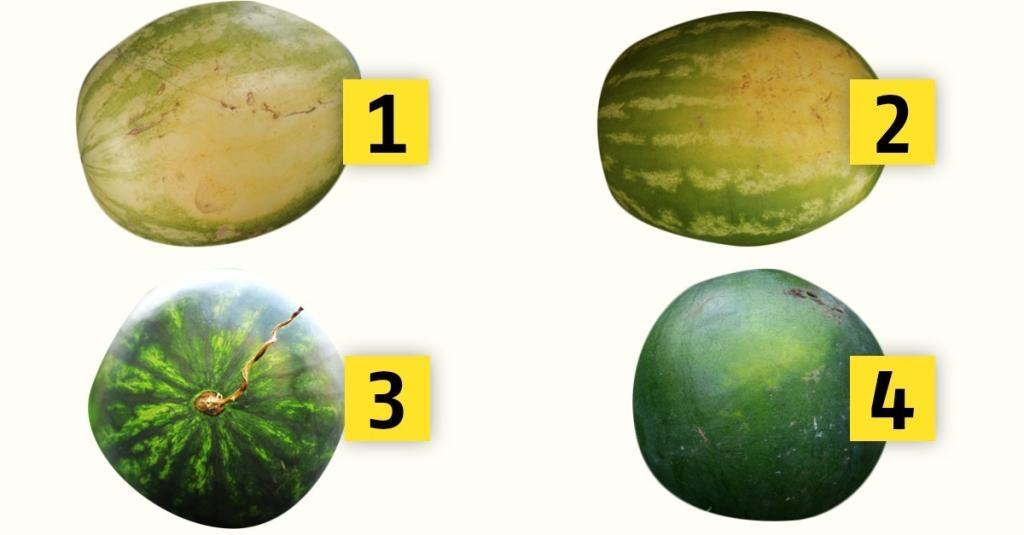Gute Wassermelone Erkennen