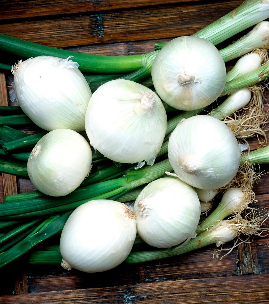 Diese Obst- und Gemüsesorten kannst du ganz leicht bei dir zu Hause anbauen