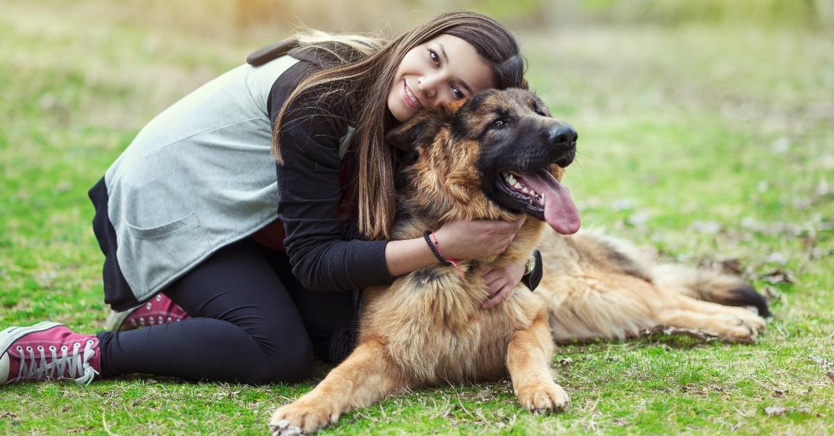 Der Hund rettet sie vor Belästigung - durch seinen eigenen Besitzer!