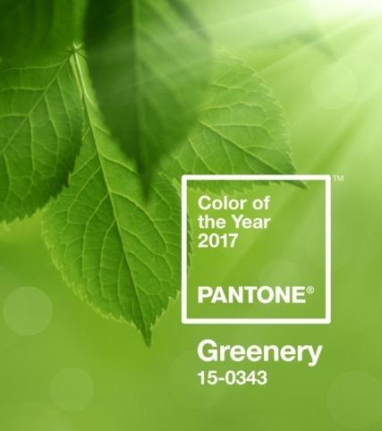Das ist laut Pantone die Farbe des Jahres 2017: Greenery