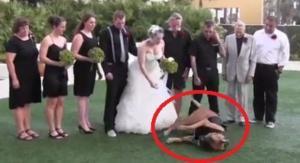 Dieser Hund Ruiniert Die Hochzeitsaufnahmen