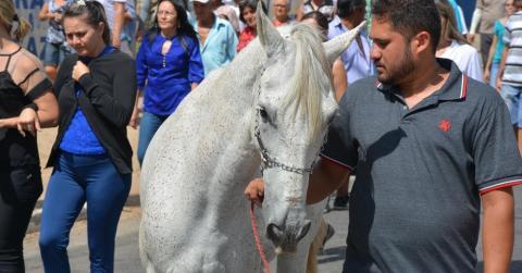 In Brasilien nimmt ein Pferd Abschied von seinem verstorbenen Besitzer bei dessen Beerdigung