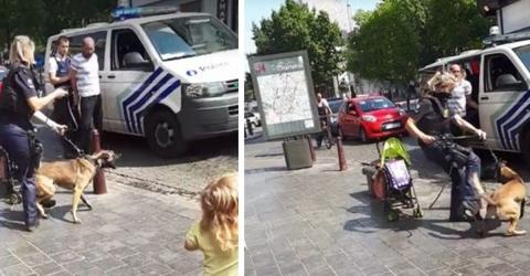 Das Video einer Polizistin, die ihren Hund tritt, macht das Netz wütend