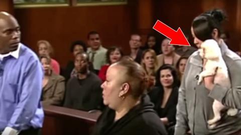 Diese Richterin hat ihre eigene Methode, um herauszufinden, wer der wahre Besitzer dieses kleinen Hundes ist