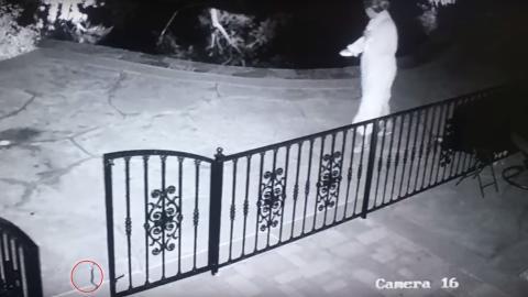 Mitten in der Nacht passiert dieser Frau etwas super Gefährliches mit dem Spielzeug ihres Hundes!