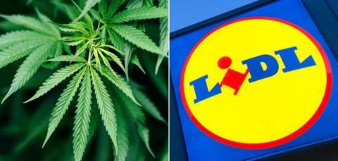 Neben Eiern, Butter und Brot: Lidl verkauft jetzt Cannabis!