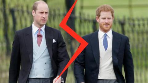 Eiszeit bei den Royals: Brüder William und Harry gehen auf Distanz und das hat einen Grund