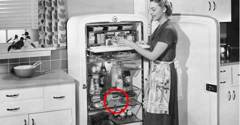 So wirst Du mit natürlichen Mitteln schlechte Gerüche im Kühlschrank los!