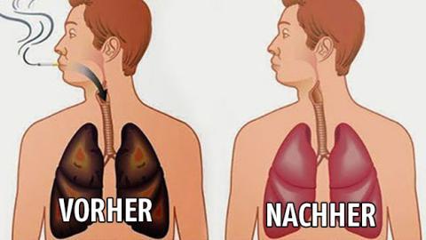 Nahrungsmittel, mit denen du deine Lunge von Teer und Nikotin reinigst