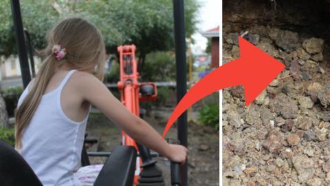 Eine Familie macht bei Gartenarbeiten eine unglaubliche Entdeckung