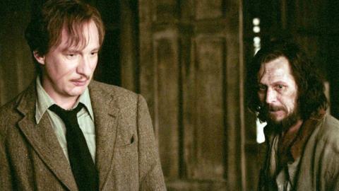 Neue Harry-Potter-Theorie bringt Fans zum Weinen