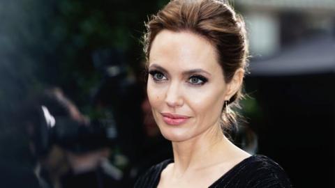 Nacktfotos von Angelina Jolie zum Verkauf.