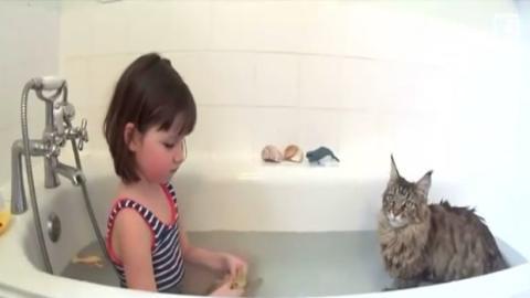 Das Mädchen spricht mit niemandem, doch dann kommt diese Katze in ihr Leben
