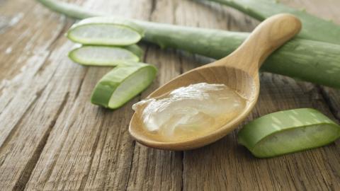 Aloe-Vera-Gel: 10 Vorzüge und Anwendungsmöglichkeiten für Gesicht, Haut und Körper