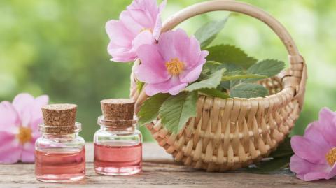 Hagebuttenöl/Wildrosenöl: Die Beauty-Waffe gegen Schwangerschaftsstreifen, Hautirritationen und Falten