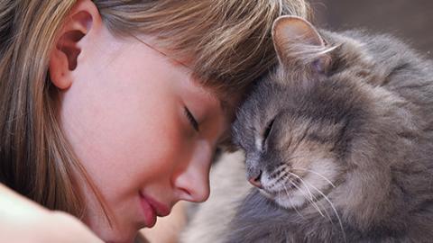 Diese 5 Zeichen beweisen dir, dass deine Katze dich ganz doll lieb hat