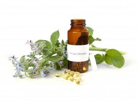 Borretschöl: Die beste Pflege für sensible und empfindliche Haut