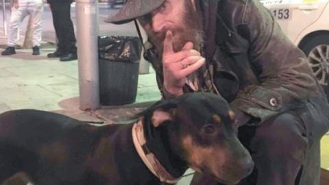 Sie begegnet dem Obdachlosen und seinem kranken Hund...Du kommst nicht darauf, was sie wagt zu tun!