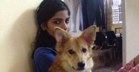 Diese Inderin sagt ihre Hochzeit aus Liebe zu ihrem Hund ab.