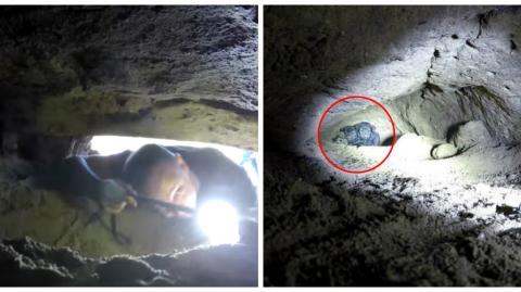 Hope for Paws: Der Verein entdeckte 9 Welpen in einer unterirdischen Höhle