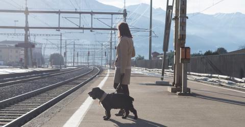 Am Bahnhof: Mit einer perversen Technik will sie sich ihres Hundes entledigen (Video)