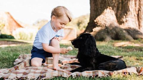 Kate Middleton und le Prinz William: Ein Foto von Prinz George und seinem Hund Lupo erregt Wellen