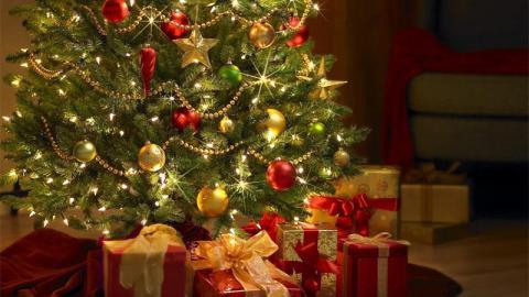 Weihnachten 2016: 3 Ideen für schöne und originelle Tannen