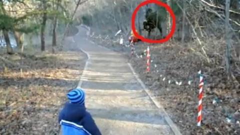 Dieser kleine Junge sieht sich mit einem Dinosaurier konfrontiert. Was wird er tun?