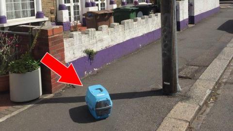 Ein Mann findet die Transportbox auf der Straße. Dann entdeckt er das Unfassbare!