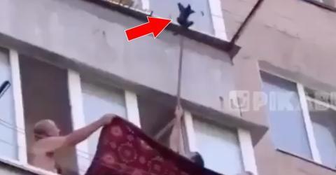 Männer retten Kätzchen, das an einer Wäscheleine hängt!