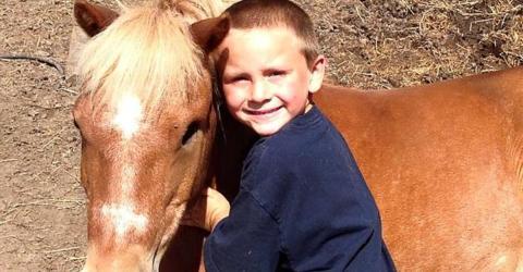 Als er vom Schicksal von Pony Max hört, greift ein Fünfjähriger ein
