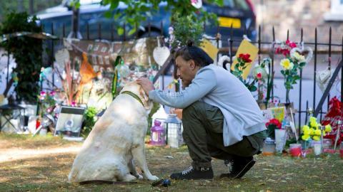 George Michael: Labradordame todtraurig seit dem Tod ihres Herrchens