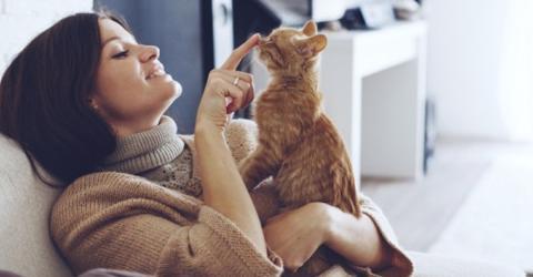 So will dir deine Katze sagen, dass sie dich lieb hat!