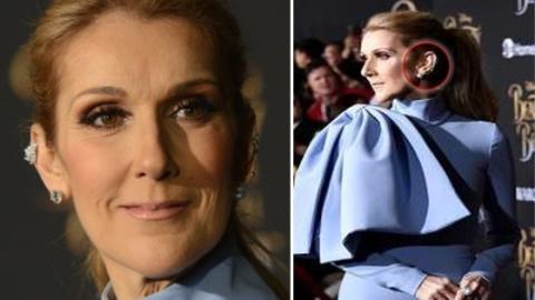 Dieses Detail bei Celine Dion's Outfit hat all ihre Fans überrascht!