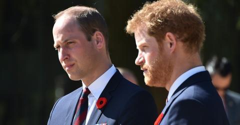 Harry und William bedauern ihre letzten Worte an Diana!