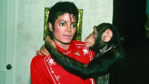 Michael Jackson's Putzfrauen offenbaren überraschende Details aus seinem Leben
