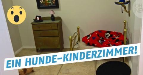 Hund bekommt ein Kinderzimmer, ein Hundekinderzimmer!