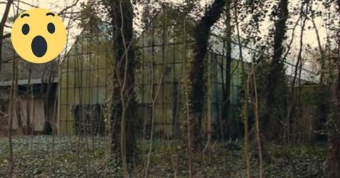 Reporter dringen in diesen stillgelegten Zoo ein. Was sie da entdecken, ist umwerfend!