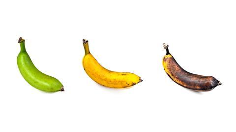 Welche dieser Bananen ist die Beste für deine Gesundheit?