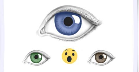 Nimm die Augenfarbe deiner Eltern und deine. Wir sagen dir, ob du jemand BESONDERES bist!