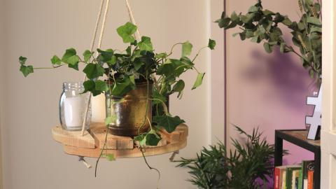 Hängeregal für Pflanzen: So kannst du den Trend ganz einfach zu Hause nachbauen