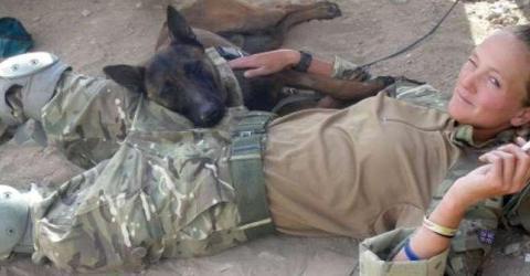 Tod statt Ruhestand: Das soll mit ausgedienten Armeehunden passieren